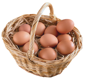 egg_png19