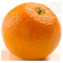 orange_png799